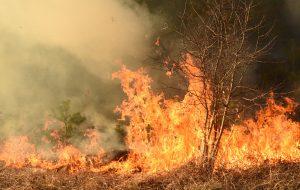Catastrophes climatiques : le monde est déjà en feu
