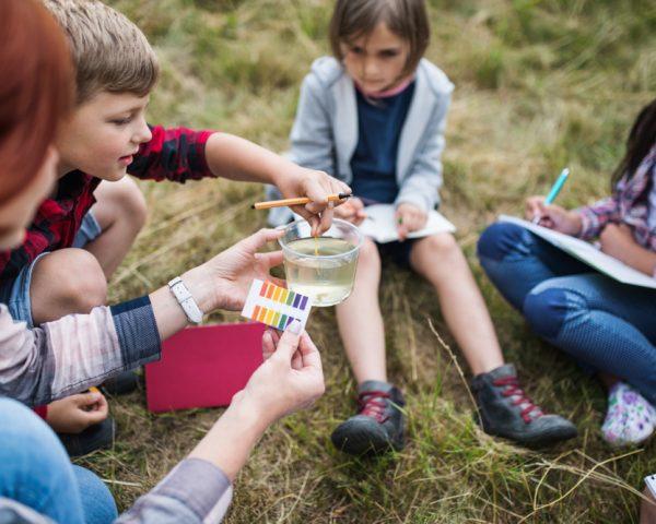 """""""Pour faire aimer l'école, sortons les enfants dans la nature"""""""