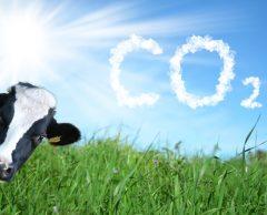 COP26 : Où en est la France dans ses émissions de CO2 ?