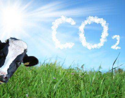 Avant de prendre de nouveaux engagement lors de la COP26, la France respecte-t-elle ses objectifs de réduction des émissions. ?