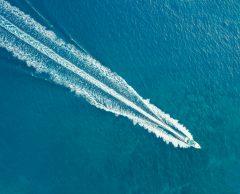 Pollution sonore des océans : des solutions pour baisser le volume