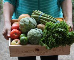 Bientôt une sécurité sociale de l'alimentation?