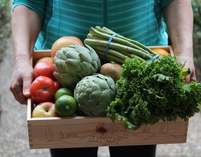 La sécurité sociale de l'alimentation doit permettre d'accéder à des aliments de qualité, bio, locaux.