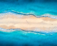 COP26 : Quels enjeux pour les océans ?