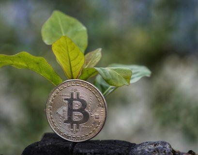 Et si une cryptomonnaie comme le Bitcoin permettait de lutter contre le réchauffement ?