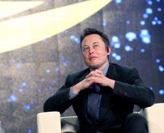 Ce village normand qui résiste aux antennes-relais d'Elon Musk
