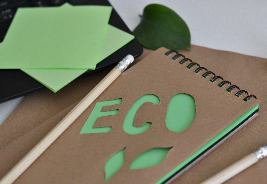 La première édition du prix de l'action des éco-délégués récompense les projets les plus inspirants des collégiens et lycéens en faveur du développement durable.