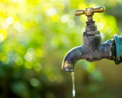Douze solutions pour économiser l'eau
