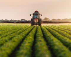 Seul 1 % des financements au secteur agro-alimentaire pour réduire les pesticides